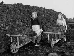 Transport van turf met kruiwagens, Klazienaveen, 26 oktober 1951