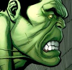 The Hulk By Frank Cho...