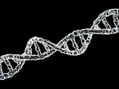 ADN por arkhangellohim