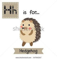 Cute children zoo alphabet H letter tracing of Hedgehog standing on two legs for kids learning English vocabulary.