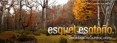 Esquel  Íntimo: VISITÁ ESQUEL- Turismo todo el año.