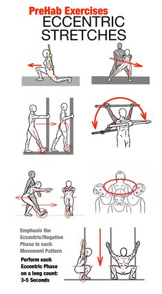 PreHab Exercises - Examples of Eccentric Stretching Eccentric Stretching is a great way to increase Mobility and develop efficiency in a specific Movement Pattern. Perform each stretch with a 3-5 second count on the Eccentric or Negative phase of the movement. To learn more about stretching, read The Art of Stretching at www.prehabexercises.com #prehab #stretching #keepgettingbetter #buildingathletes