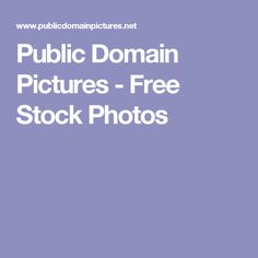 Public Domain Pictures - Free Stock Photos Stock Photo Sites, Art Journal Prompts, One Word Art, Free Graphics, Pictures To Paint, Photography Tutorials, Public Domain, Designs To Draw, Free Images