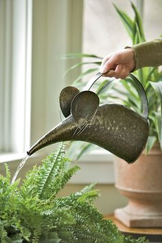 You'll love using this whimsical and practical mouse watering can for your houseplants! It comes complete with cute whiskers and holds cups of water. Dream Garden, Garden Art, Garden Tools, Garden Design, Home And Garden, Veg Garden, Garden Sheds, Landscape Design, Indoor Garden