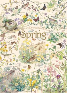 Birds, butterflies, and bunnies come alive in this soft earthy celebration of spring in the 1000 piece puzzle, Country Diary: Spring from the collection of Edith Holden's 'The Country Diary of an Edwardian Lady'.