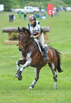 I think that after I learn saddleseat, I want to learn hunter style and jumping!