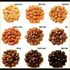 Different types of coffee beans https://www.facebook.com/pages/Coffee-Society/651773478236556