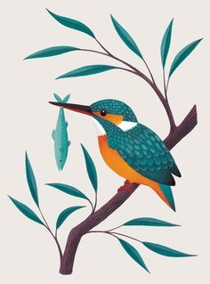 A collection of work by Laura Middleton, illustrator living in Cambridge, UK. Hand painted wildlife and natural history illustrations, art prints and greetings cards. Bird paintings by Laura Middleton. Kingfisher Bird, Kingfisher Tattoo, Cadre Diy, Nature Illustration, Bird Drawings, Art Graphique, Pretty Art, Bird Art, Stencil