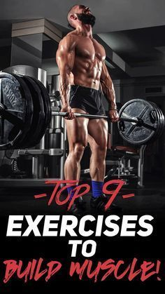 Check out The Top 9 Exercises to Build Muscle! #fitness #gym #exercise #workout https://www.musclesaurus.com/bodybuilding/