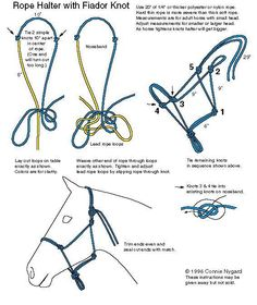 How to tie a rope halter