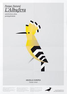 Abudilla europea. Aves de l'Albufera. Manuel Martín y Mutdesign. 2012.