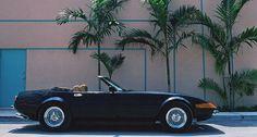 Daytona Miami Vice