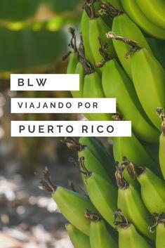 Descubre qué deliciosos alimentos podrás ofrecer a tu bebé si viajas con tu bebé a Puerto Rico y aplicas Blw (Baby Led Weaning) #blw #babyledweaning #blwenpuertorico  #alimentacioninfantil #PuertoRico Puerto Rico, Baby Led Weaning, Fruit, Traveling, Food Items, Puerto Ricans