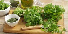 Libeček nemusíte využívat jen v kuchyni, má i široké léčební účinky.