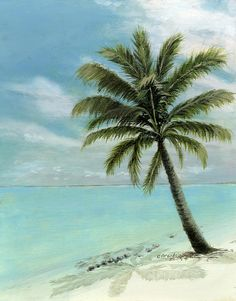 Original Oil On Canvas Cecilia Brendel Palm Tree Ocean Scene Turquoise Waters Cabos Bahamas Florida Keys Hawaii Turks And Caicos Clear Blue Sky Tranquil White Sand Beach Italy Italian Art Print featuring the painting Palm Tree Study by Cecilia Brendel Ocean Scenes, Beach Scenes, Tahiti, Tree Study, Palm Trees Beach, Tree Wallpaper, Beach Art, Sand Beach, Beach Mural