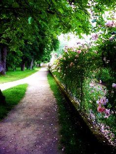 Take the path less traveled.
