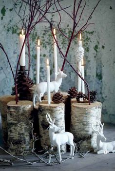 Woodland Christmas Vignette   Pine Cones,  Birch Cuts, Branches and Reindeer