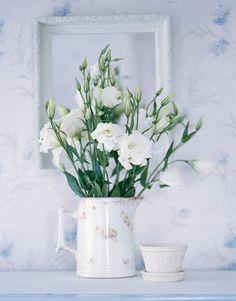 gorgeous lisianthus
