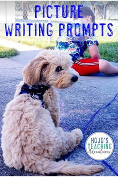 Learn how to use picture writing prompts to keep elementary students engaged, writing, and having fun with the great ideas and suggestions here. Picture Writing Prompts, 4th Grade Classroom, Year 2, Upper Elementary, Literacy Centers, Special Education, Fun Activities, Writers, Middle School