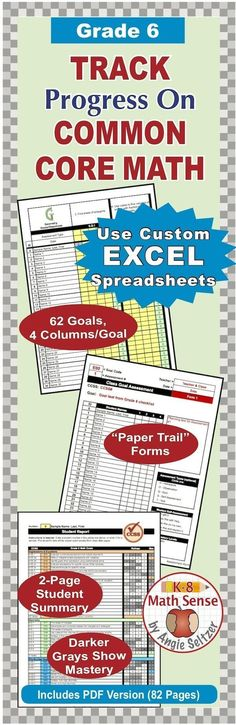 Are you tracking progress? The sheets in this Excel file are linked to make it easy to record and view progress. View mastery levels of a whole class or an individual student. ~by Angie Seltzer