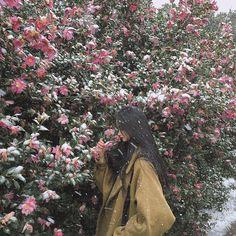 처음이자 마지막인 눈 내리는 카멜리아힐  정말 평화로워 보이지만 발이 꽁꽁 얼어 뽀사질 것 같아서 눈보라 맞아가며 울면서 갔다.. ❄️