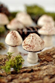 (^o^) C is for Cookie (^o^) ~ Autumn ~ Mushroom Meringue Cookies - Bezowe grzyby Authentic Mexican Recipes, Mexican Food Recipes, Kolaczki Recipe, Easy Dinner Recipes, Holiday Recipes, Christmas Recipes, Meringue Mushrooms, Hungarian Cake, Meringue Cookies