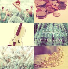 The Selection by Kiera Cass. I love this book! But The One isn't coming out until spring 2014 :'(