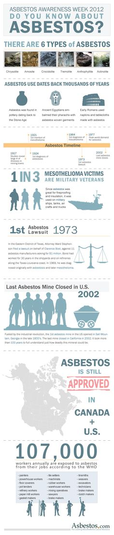Inographic created for Asbestos Awareness Week to help spread awareness on this horrible disease.