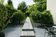 elevated timber path