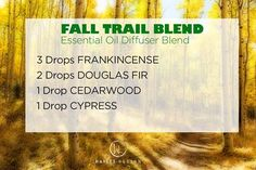 One of my favorite times of the year here in Colorado, so thought I would share this very cool Fall Trail Blend with you guys.  Remember you can adjust these amounts to suit your own preferences.  That is what I love about these blends and being able to diffuse my essential oils. So much to discover and explore with them. www.hayleyhobson.com