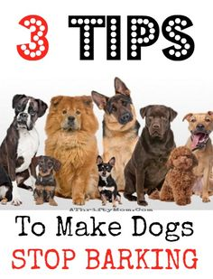 how to make dogs STOP barking 3 ways that will change your life and make you love your dog again, pet tricks