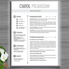 teacher resume template clean editable with ms powerpoint - Resume Templates For Educators