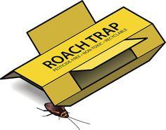 Best Roach Traps on the market.