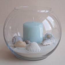 Beach Sand & Sea Shell