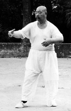 Chi Master Wang Shu Jin