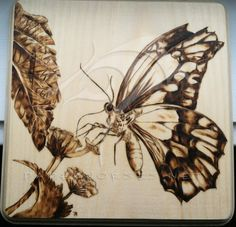 butterfly pyrography | ... butterfly2 t his piece was done using pyrography on 6 x 6 on walnut