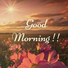 Latest good morning images with flowers ~ WhatsApp DP, Love DP, DP Images, WhatsApp DP For Girls Good Day Images, Beautiful Morning Pictures, Good Morning Images Flowers, Latest Good Morning Images, Cute Good Morning Quotes, Good Morning Inspiration, Good Morning Picture, Good Night Image, Good Morning Wishes