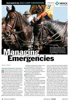 [FREE DOWNLOAD] Managing Emergencies - TheHorse.com | Learn more about the vet's role during barn fires; managing dehydration and exhaustion; and preventing medication mishaps.