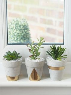 Succulent Planters DIY See my quick DIY tutorial to make these pretty gold geometric concrete succulent planter pots.See my quick DIY tutorial to make these pretty gold geometric concrete succulent planter pots. Succulent Planter Diy, Diy Planters, Succulents Garden, Gold Planter, Planter Pots, White Planters, Garden Shrubs, Hanging Planters, Painted Plant Pots