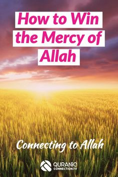 How to Win the Mercy of Allah through Connecting to Allah. For all muslims who need an Iman boost and rid themselves of negative feelings of guilt. I Feel Lost, Feeling Lost, Islamic Messages, Islamic Quotes, Get What You Want, How To Get, Preparing For Ramadan, Islamic Teachings, Prayer Verses