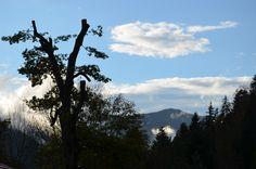 #Herbst Beginn in den Bergen in #Bayern nahe Rosenheim