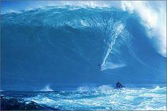 Dave Kalama at Jaws