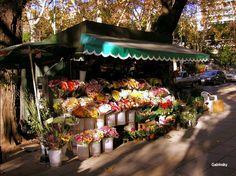 October 1, 2011 ·  Vendedor de flores en Belgrano — in Buenos Aires, Distrito Federal, Argentina.