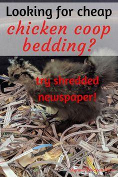 Pet Chickens, Raising Chickens, Chickens Backyard, Cheap Chicken Coops, Guinea Fowl, Nesting Boxes, Newspaper, Homestead, Saving Money