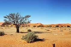 #namibia #panoramanamibia #namibdesert