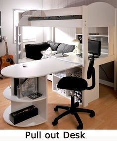 Loft bed with desk and sofa omg need