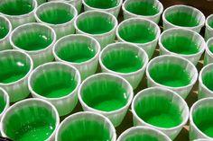 Ultimate green jello shots!