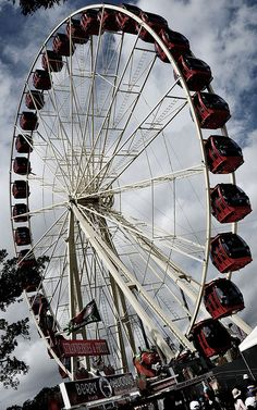 """up and down the ferris wheel, tell me how does it feel to be so high..."" -norah jones"