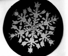 Dendrite Snowflakes: 3-dimensional, with multiple arms connecting to a hub.
