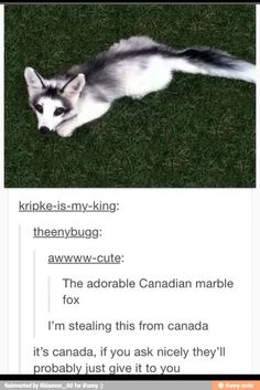 Give me the Canadian fox!